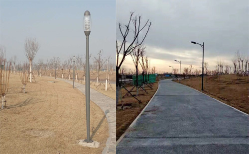 天津郊野公园景观照明,绿化美化亮化在行动
