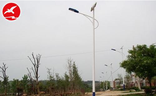 河北女孩创业之路无疑是太阳能路灯生产厂家学习的榜样