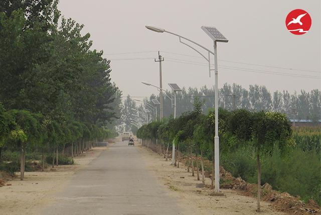 城市建筑的美化太阳能路灯厂家产品来点缀
