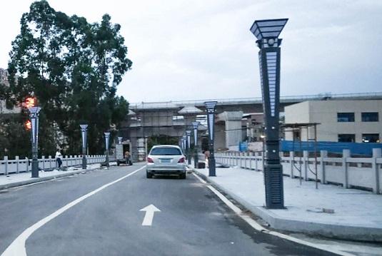 广东清远市清城区富强路榕树围村LED景观灯道路亮化工程案例