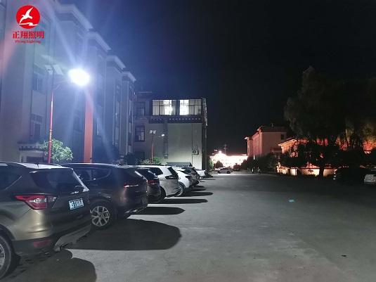 西藏林芝市民族风太阳能路灯工程案例
