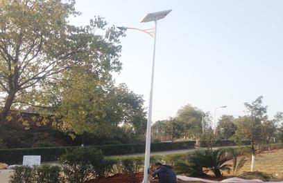 新农村太阳能路灯 正翔2101
