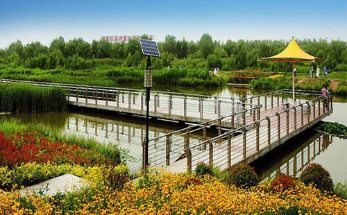 富含民族文化特色的中式庭院灯 正翔照明广州白云湖项目